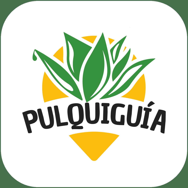 Pulquiguía